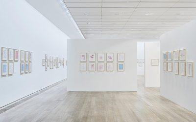 "Fondation Beyeler: Louise Bourgeois ""Insomnia Drawings"""