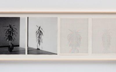 Dia Art Foundation, Beacon: Charles Gaines