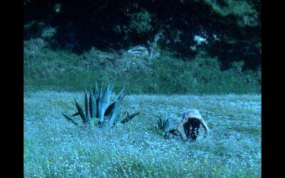 """KADIST: """"Enterrar los pies en el paisaje (To Bury Your Feet in the Landscape)"""""""